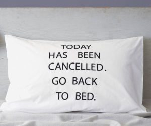21 Funny Pillowcase Designs For An Entertaining Bedroom Décor