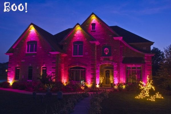 black light bulbs - Halloween Outdoor Lights