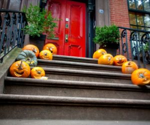 Pumpkin Adorned Patios: Decor Ideas