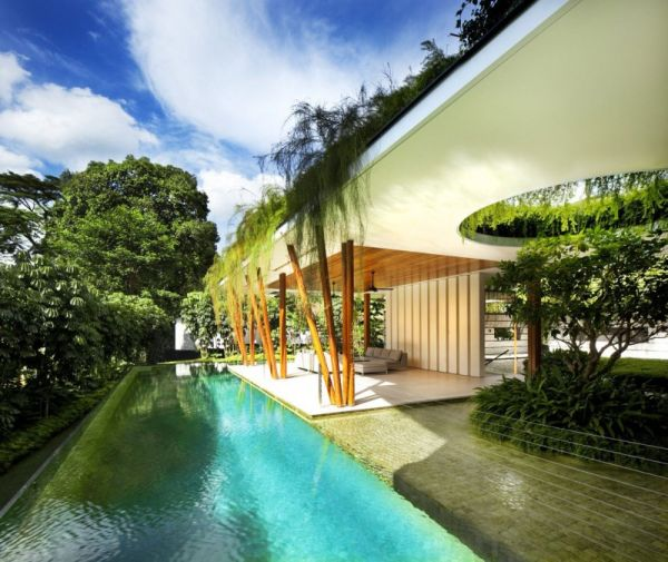 The willow house embraces the beauty and serenity of the for The willow house