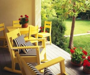 Daffodil Dressed Patios: Ideas and Inspiration