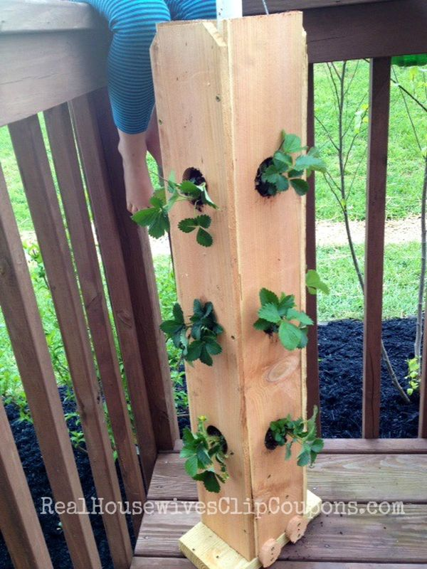 Save Space In Your Home Or Garden By Creating Vertical