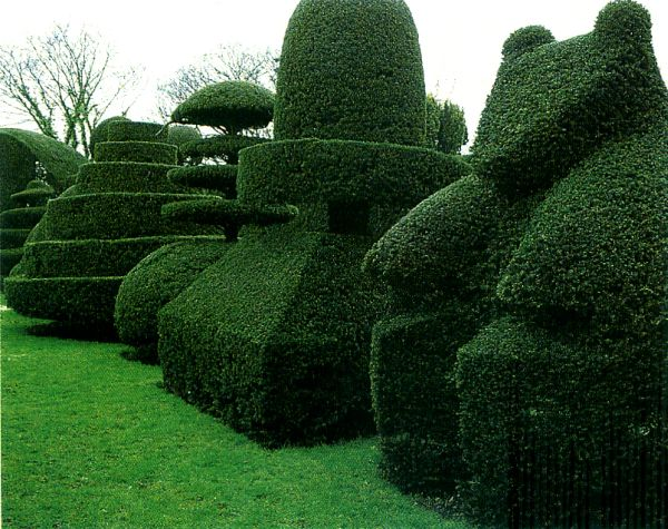 15 ways to trim a hedge in your yard for Arboles decorativos para jardin