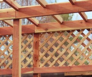 How To Build A Grape Arbor Step by Step