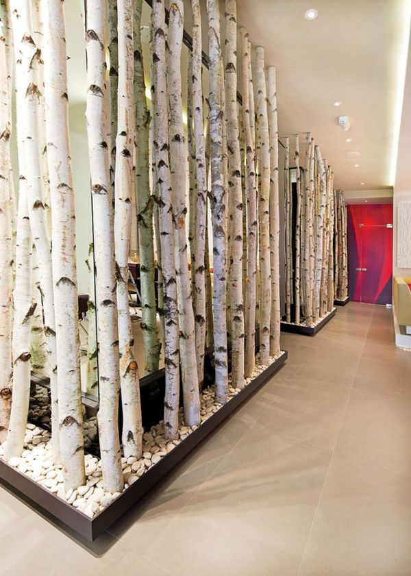 tree room divider 12 ways to use actual birch trees in your home 9848