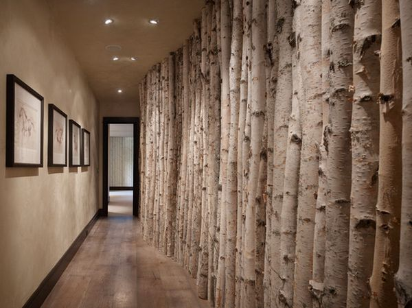 hallway wall birch trees - Baumstamm Tapete