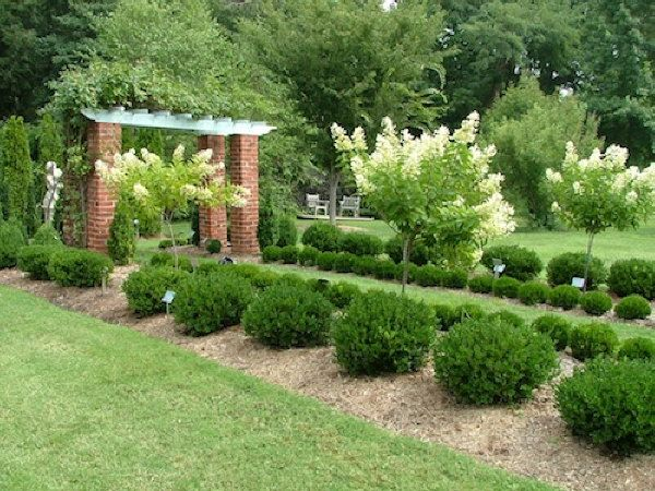 topiary-diff-sizes Garden Design With Yew Hedge And Planter on