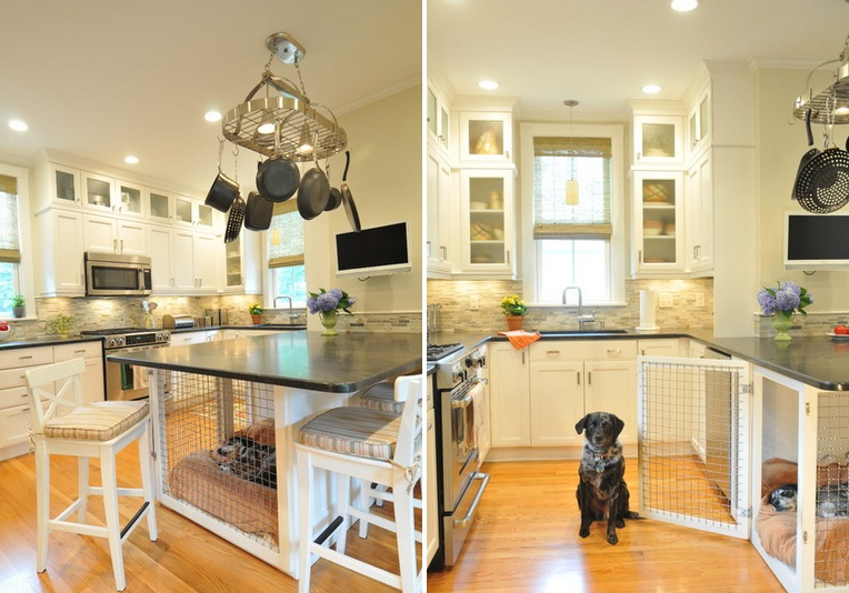 Dog Kitchen Decor Home Decorating Ideas