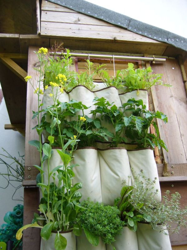 Refresh the outdoor areas with smart diy projects on a budget for Hanging vegetable garden ideas
