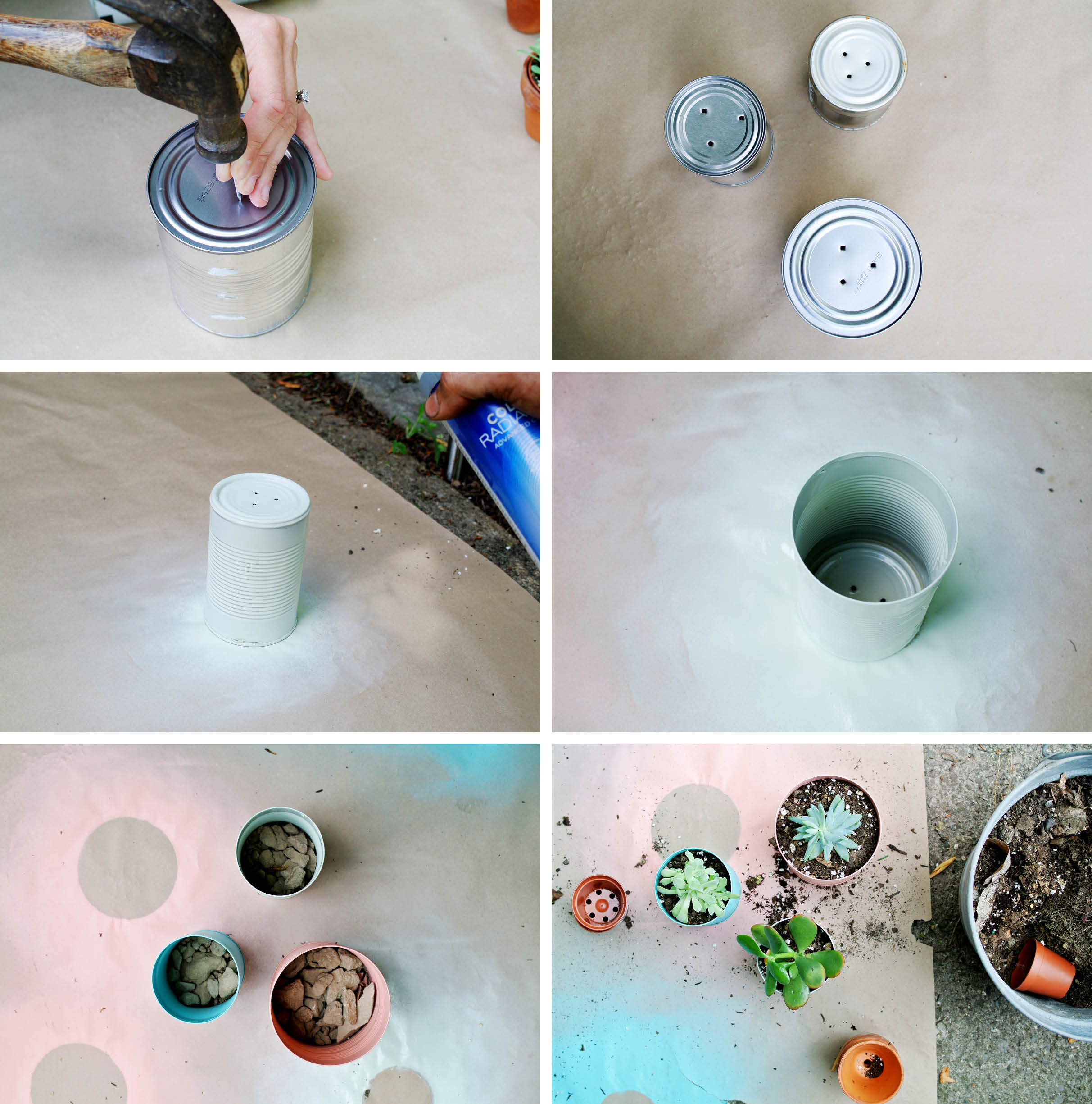 DIY painted tin can planters | farm fresh therapy
