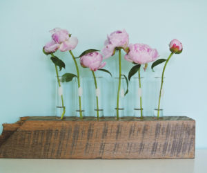 Glass Flower Vase From Test Tube and Reclaimed Wood