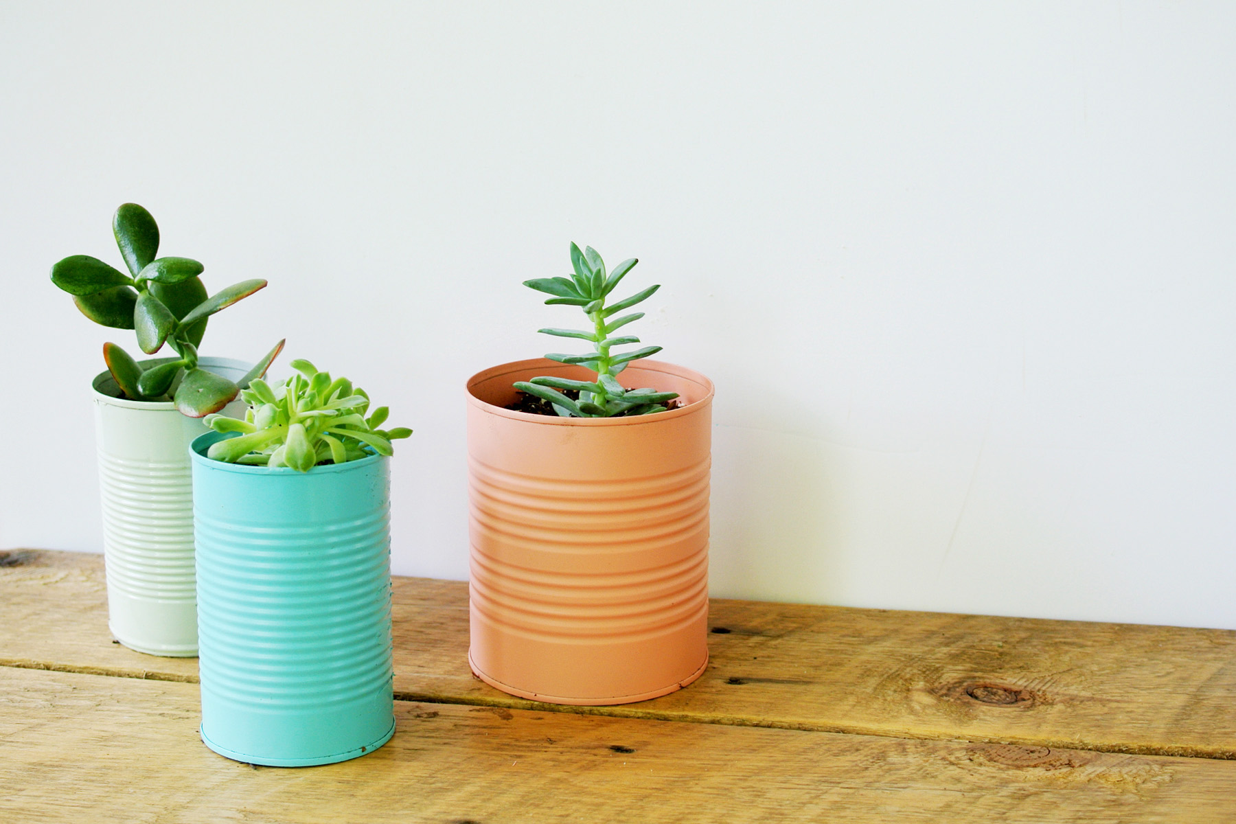 tin can planter DIY instructions