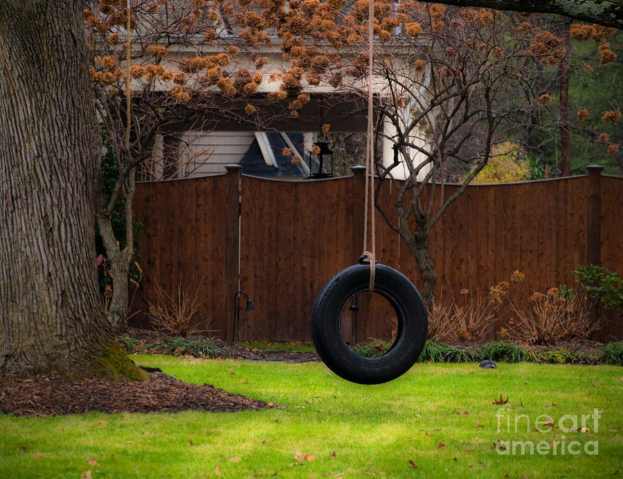 20 aesthetic and family friendly backyard ideas for Tyre swing ideas