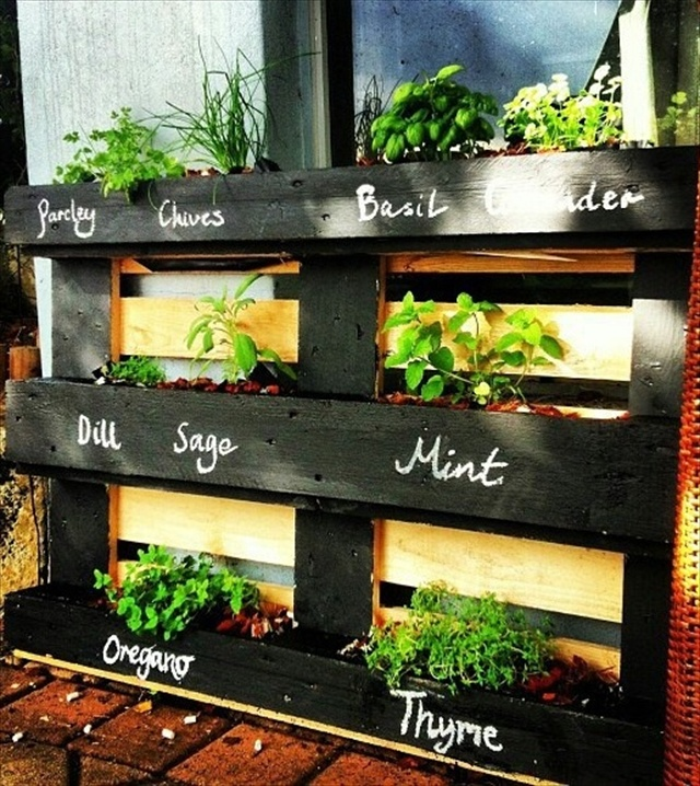 Labeled Herb Garden.