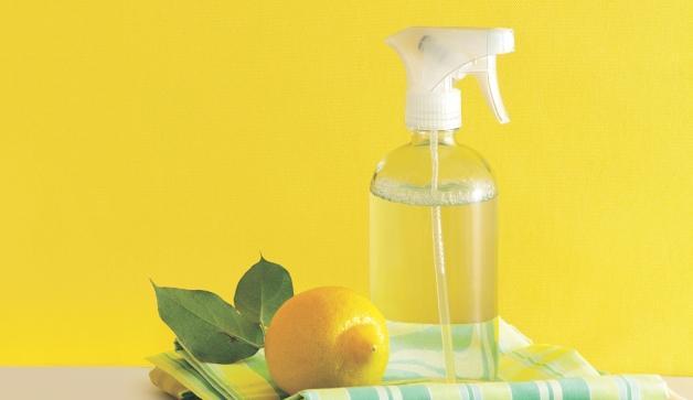 Image result for homemade air freshener lemon