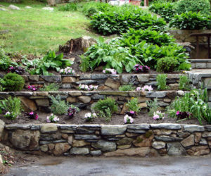use rocks to transform your plain and boring backyard into a beautiful and relaxing oasis use their sculptural beauty to create eye catching designs and