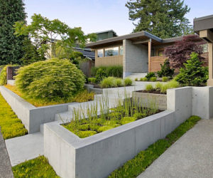 Curb Appeal 20 Modest yet Gorgeous Front Yards