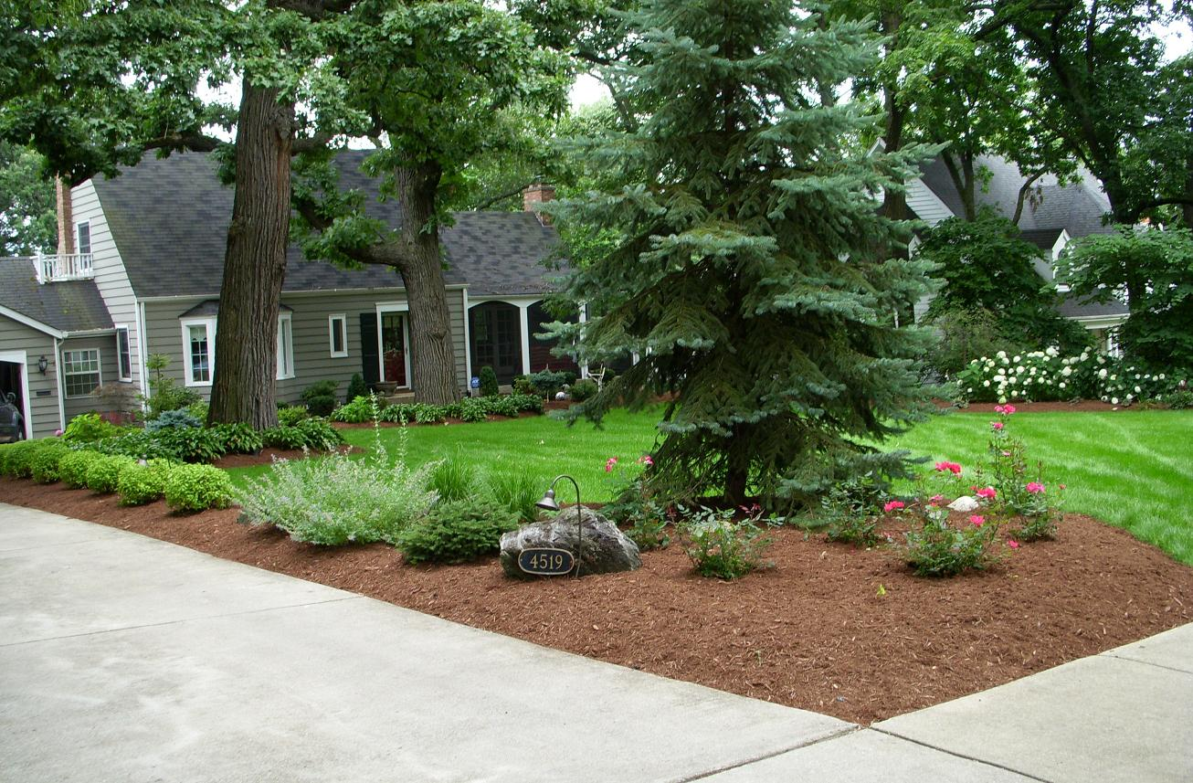 Curb appeal 20 modest yet gorgeous front yards for Best home lawn designs