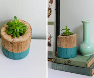 DIY Tree Trunk Planter