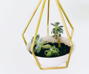 DIY Hanging Planter From Brass Pipes