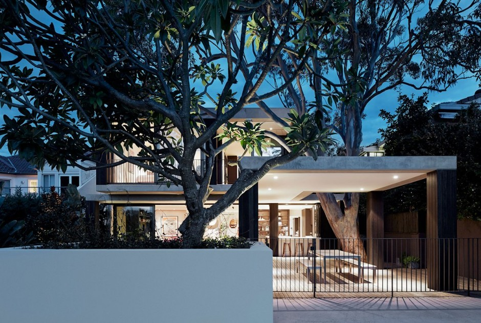 Australian Home Honors Nature By Letting A Huge Tree