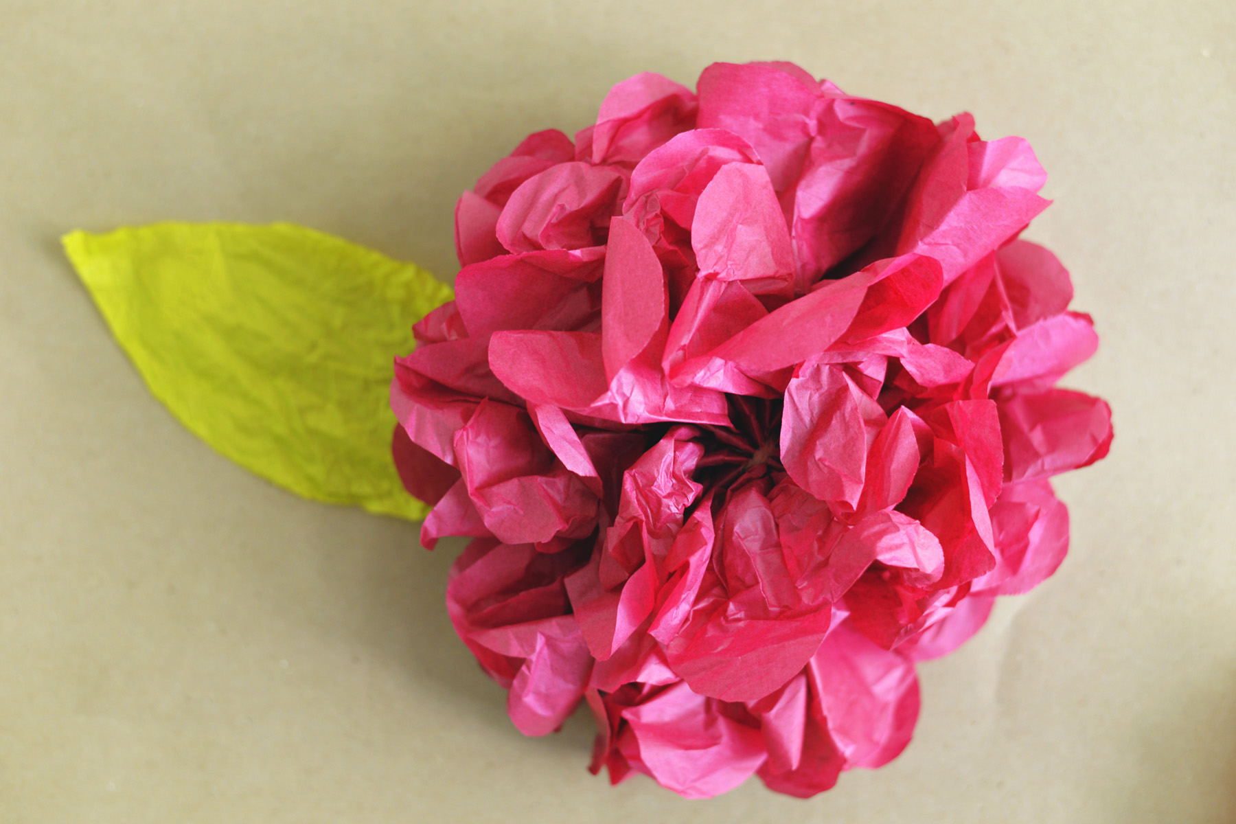 Tissue paper flower backdrop diy tissue paper flower backdrop mightylinksfo Images
