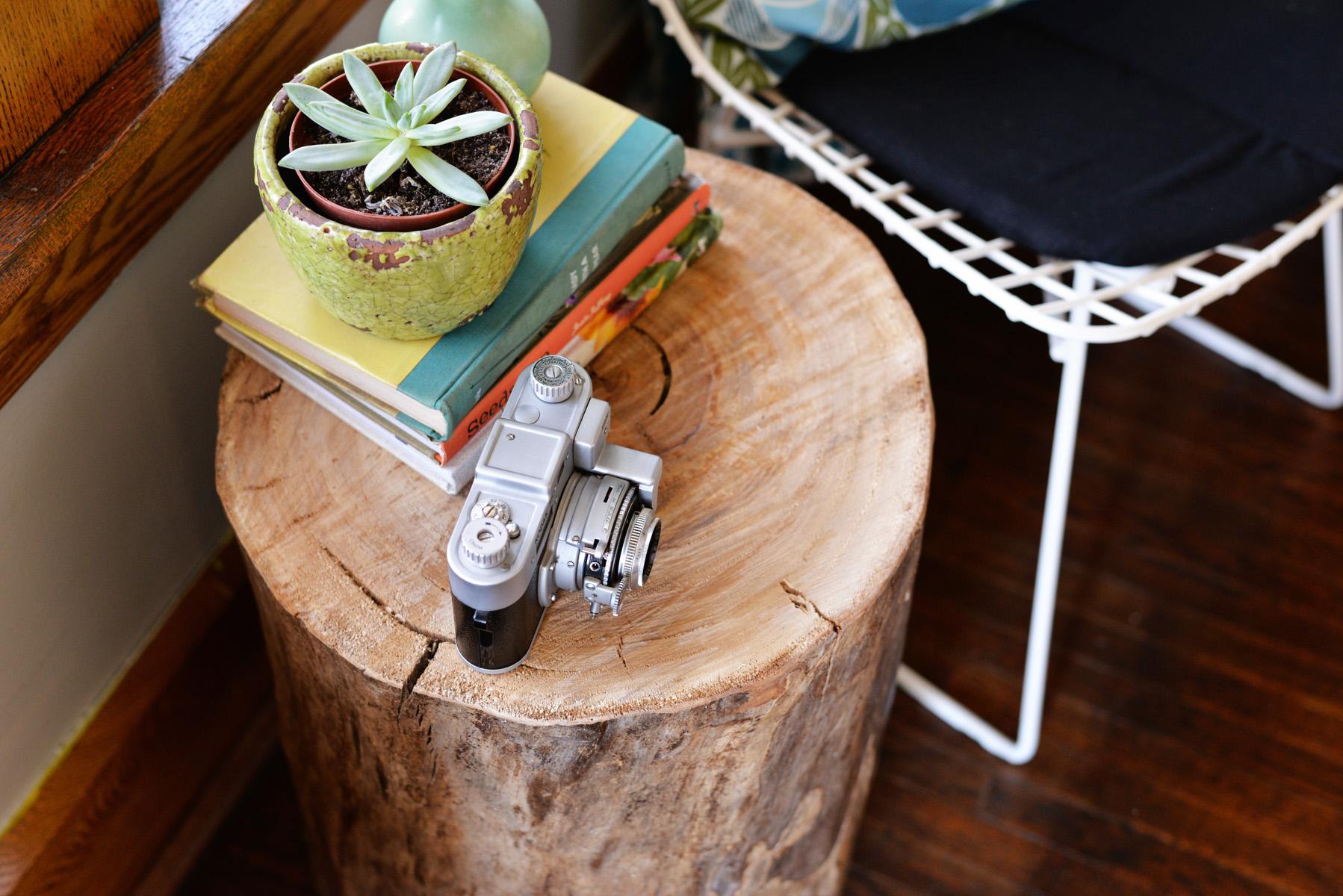 Design Tree Stump Coffee Table Diy diy tree stump side table diy