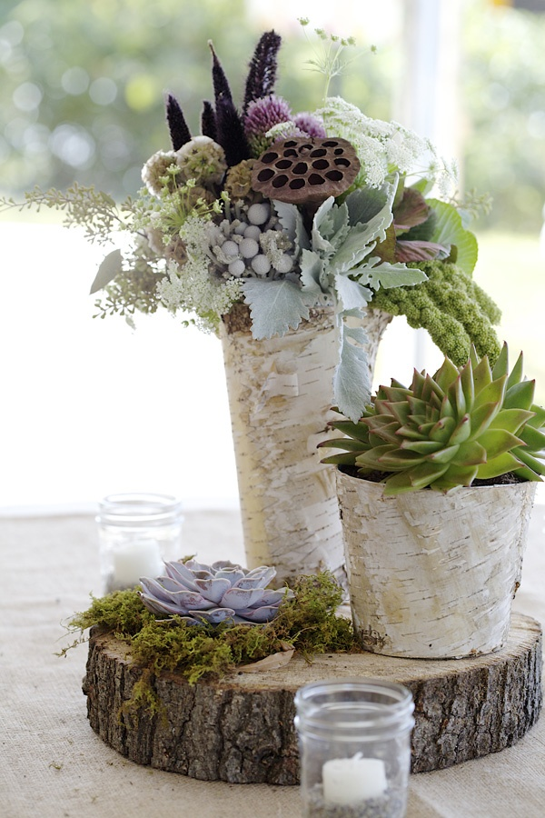Christmas Succulent Centerpieces.How To Create And Care For Your Stunning Succulent Arrangements