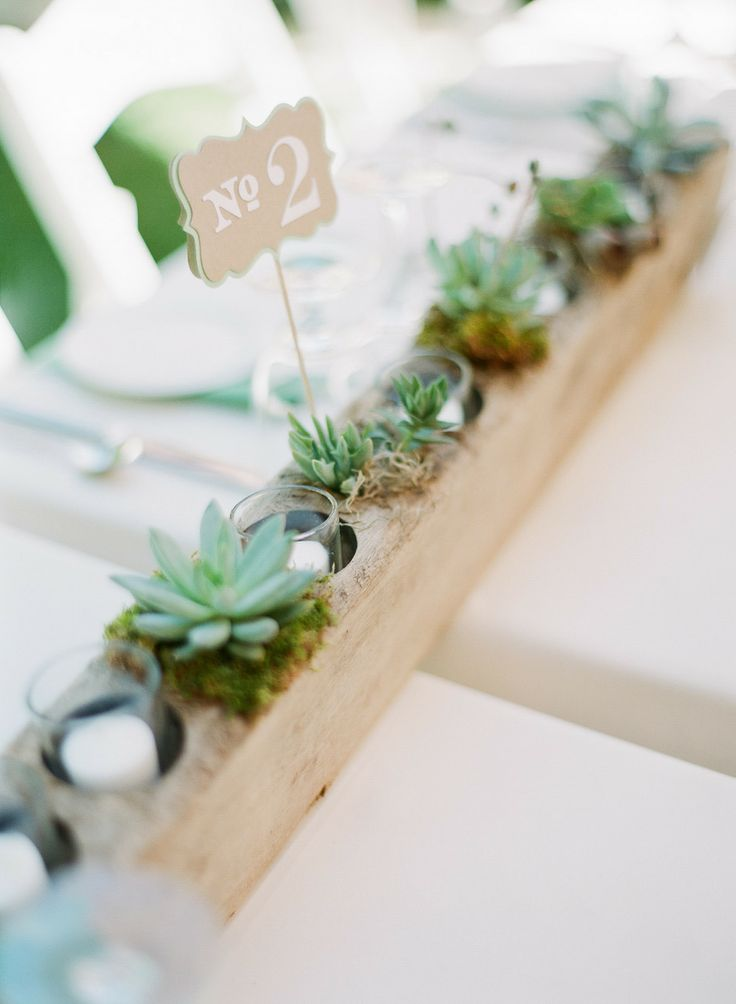 Beautiful Succulent Centerpieces.
