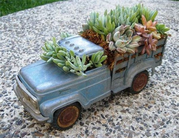 Metal Vehicle Planters : How to create and care for your stunning succulent