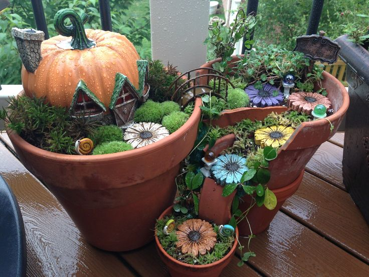 Pot Gardens. View In Gallery