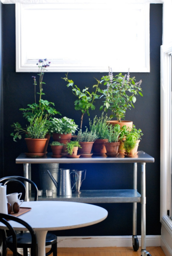 15 phenomenal indoor herb gardens rolling herbs workwithnaturefo