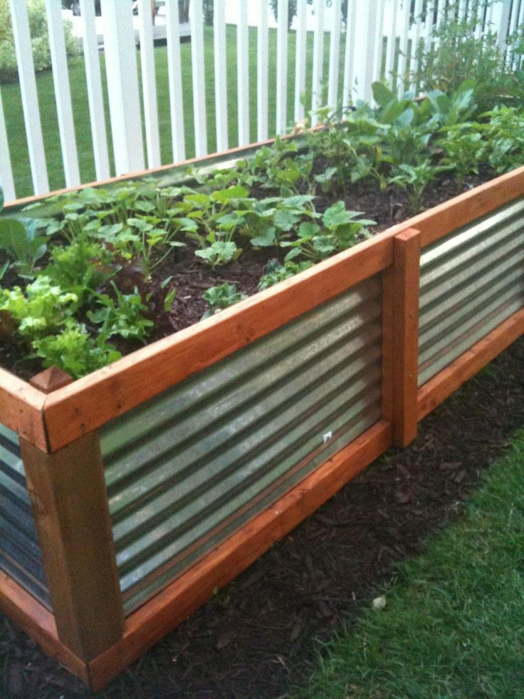 Gardening Tips Pt I DIY Raised Beds : galvanized steel from www.homedit.com size 736 x 981 jpeg 126kB