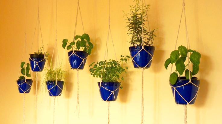 Hanging Pot Herbs