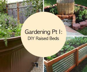 Gardening Tips Pt I: DIY Raised Beds