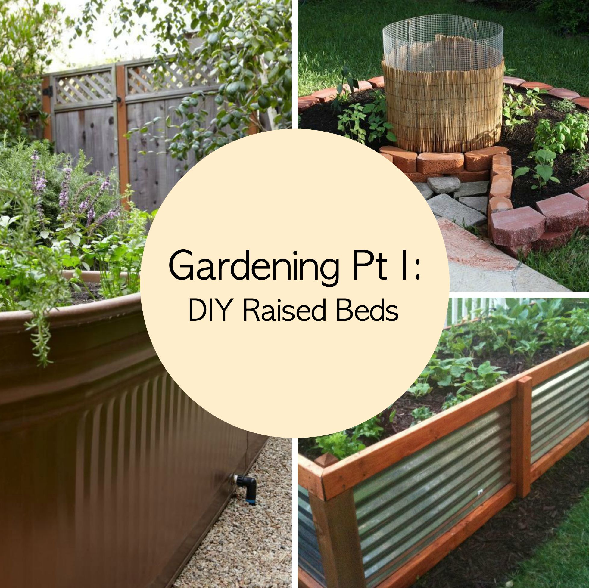 Gardening Tips Pt I Diy Raised Beds