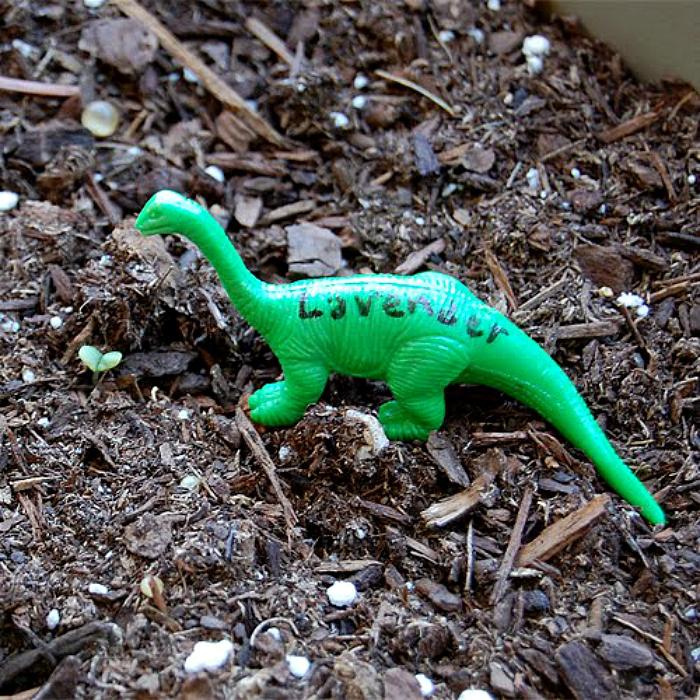 plastic animal marker