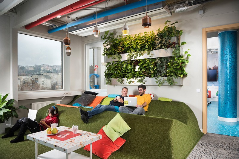 the google office in budapest vertical garden