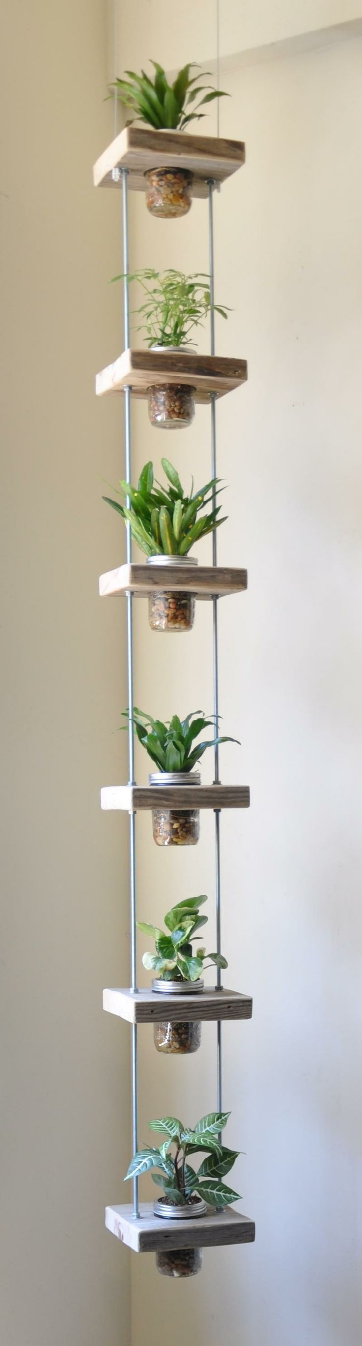 vertical hanging herbs
