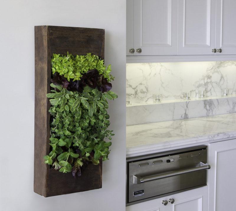 30 Phenomenal Indoor Herb Gardens