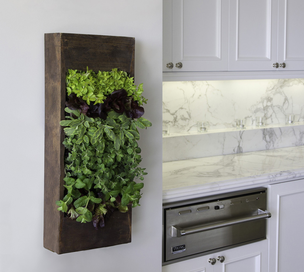 Genial Vertical Herb Box