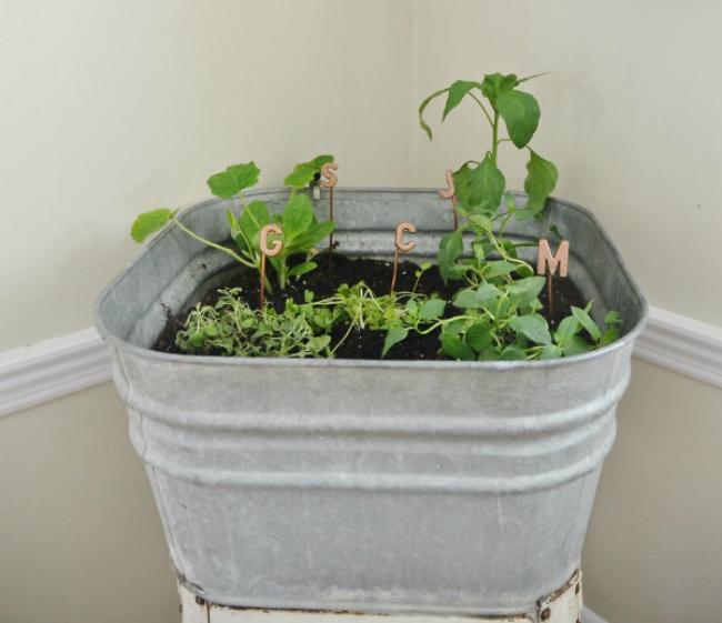 washtub herb garden