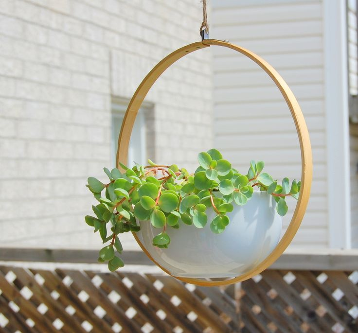 hanging planter View in gallery 15 DIY