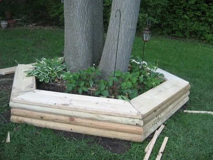 Building A Raised Flower Bed Around A Tree