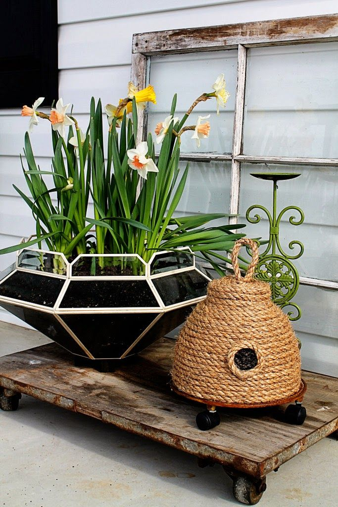 lampshade planter