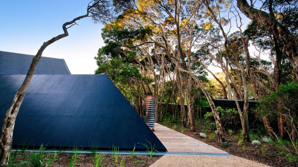 modern-cabin-extension-australia-roof