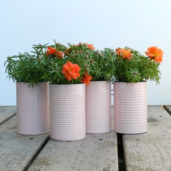 tin can planter