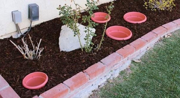 landscaping ideas Sunken Container Garden