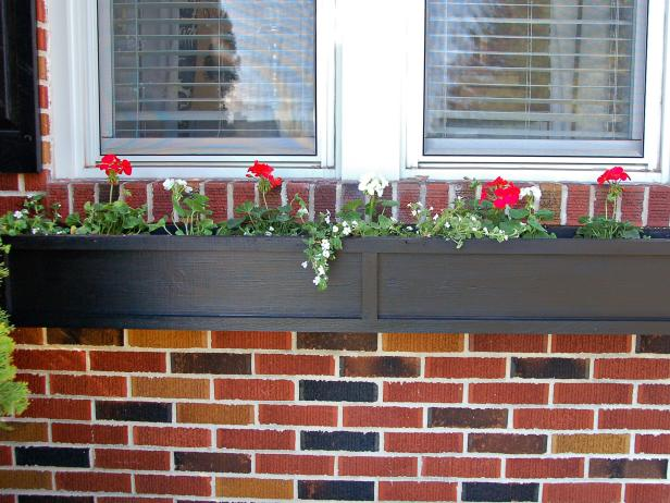 landscaping ideas Window Boxes