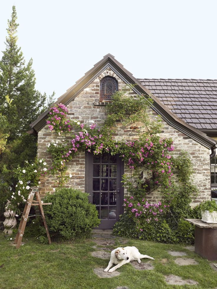 cottage climbing plants - Cottage Houses Photos